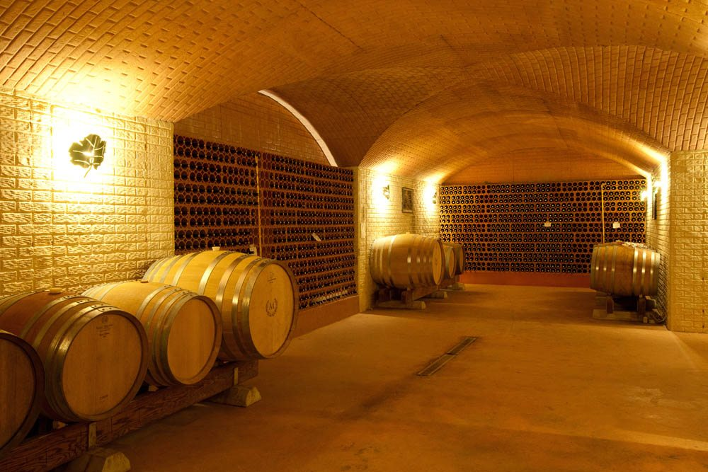 morais-vinyards-and-winery-the-winery-cellars-adegas-15 Cellars