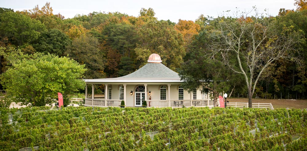 morais-vinyards-and-winery-the-winery-the-tasting-room-1 Tasting Room